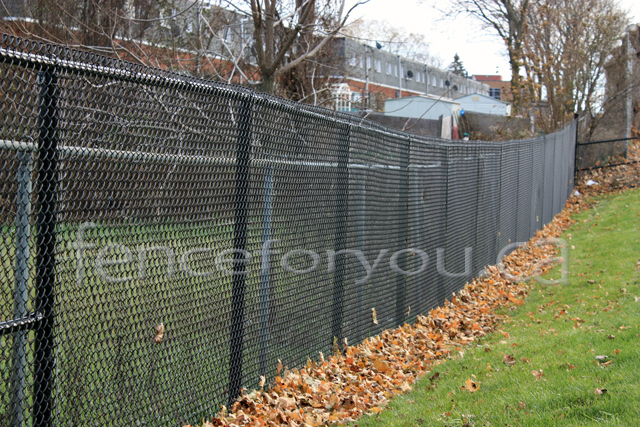 Chain Link fence picture
